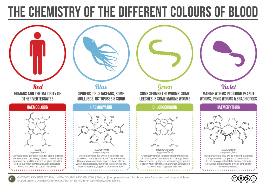 Chemistry-of-Blood-Colours-v2.3